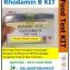 Rhodamin B Test Kit